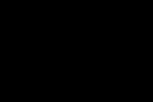 Logo Breguet đon giản có hình bộ kim Breguet